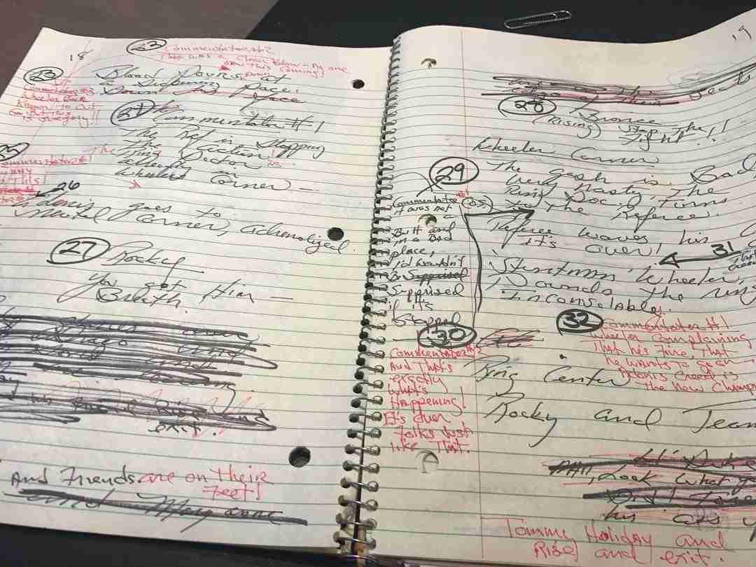 Stallone Script